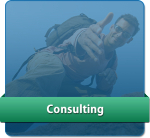 Consulting - Rooth Coaching and Consulting